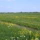 Mengsels voor agrarische toepassingen
