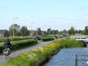 lantaarnpaal-sloot-fietspad-fietser-haag-bloemen-gras